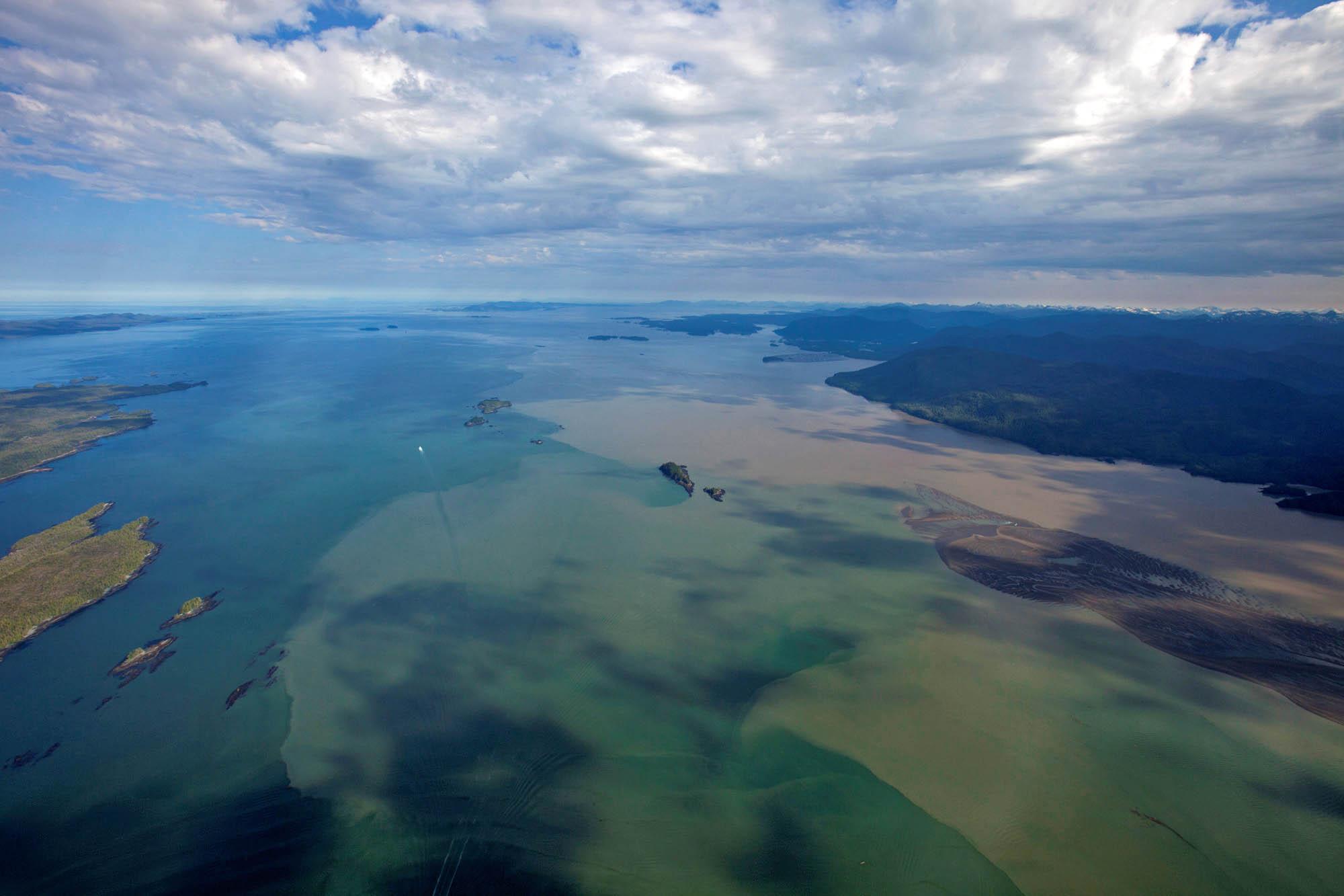 Skeena River Estuary Juvenile Salmon Habitat