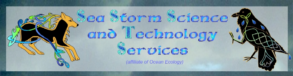 Sea Storm Scienc and Technology Services logo