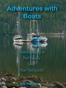 Book Cover: Adventures with Boats