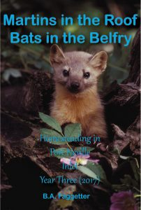 Book Cover: Martens in the Roof, Bats in the Belfry