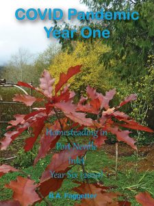 Book Cover: COVID Pandemic Year One